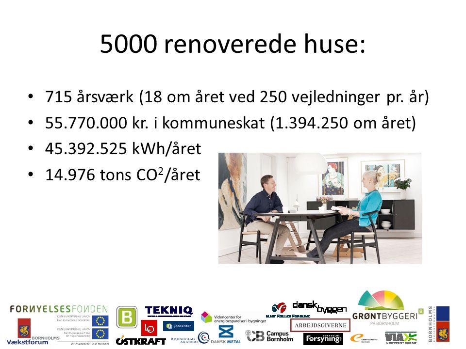 5000 renoverede huse: 715 årsværk (18 om året ved 250 vejledninger pr.