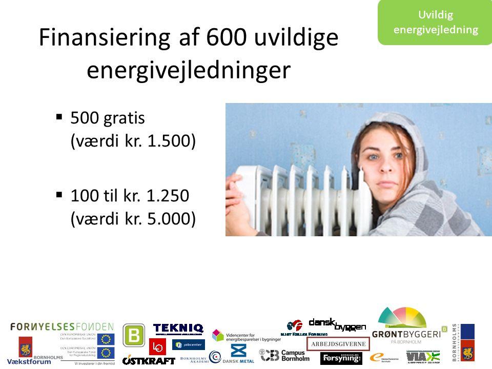 Finansiering af 600 uvildige energivejledninger  500 gratis (værdi kr.