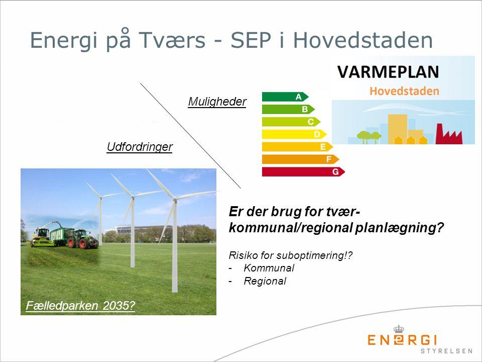 Energi på Tværs - SEP i Hovedstaden Er der brug for tvær- kommunal/regional planlægning.