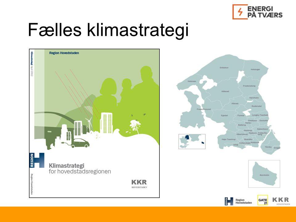 Fælles klimastrategi