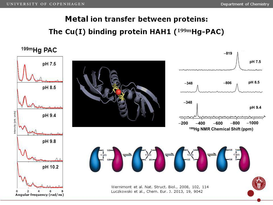 Metal ion transfer between proteins: The Cu(I) binding protein HAH1 ( 199m Hg-PAC) 199m Hg PAC pH 7.5 pH 8.5 pH 9.8 pH 10.2 pH 9.4 0 2 4 6 8 Angular frequency (rad/ns) Wernimont et al.