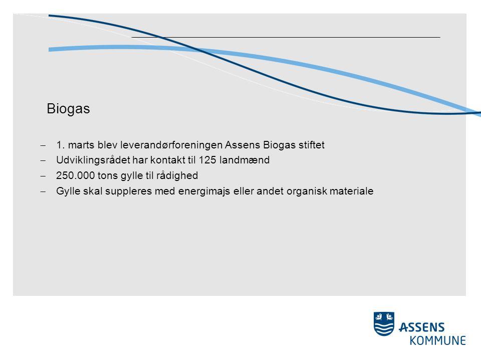 Biogas  1.