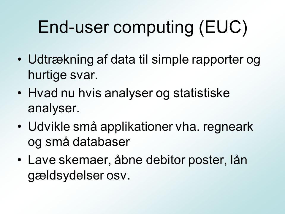 End-user computing (EUC) Udtrækning af data til simple rapporter og hurtige svar.
