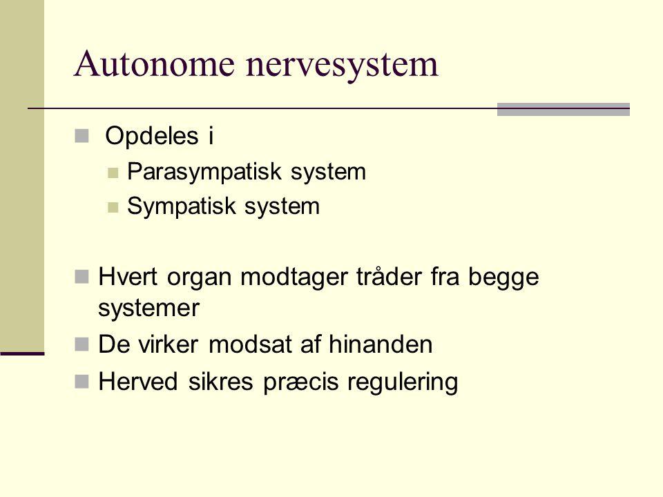 Autonome nervesystem Opdeles i Parasympatisk system Sympatisk system Hvert organ modtager tråder fra begge systemer De virker modsat af hinanden Herve