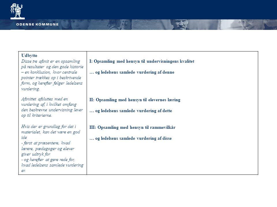 Udbytte Disse tre afsnit er en opsamling på resultater og den gode historie – en konklusion, hvor centrale pointer trækkes op i beskrivende form, og herefter følger ledelsens vurdering.