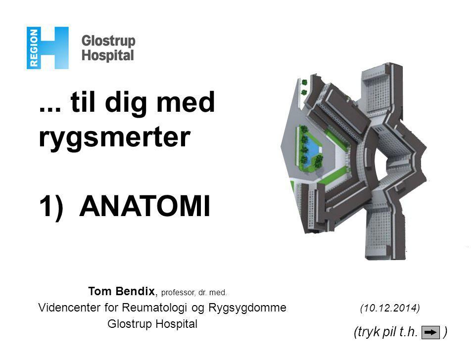 ... til dig med rygsmerter 1) ANATOMI Tom Bendix, professor, dr. med. Videncenter for Reumatologi og Rygsygdomme (10.12.2014) Glostrup Hospital (tryk