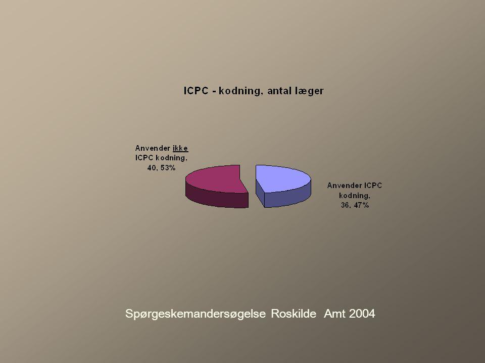 Spørgeskemandersøgelse Roskilde Amt 2004