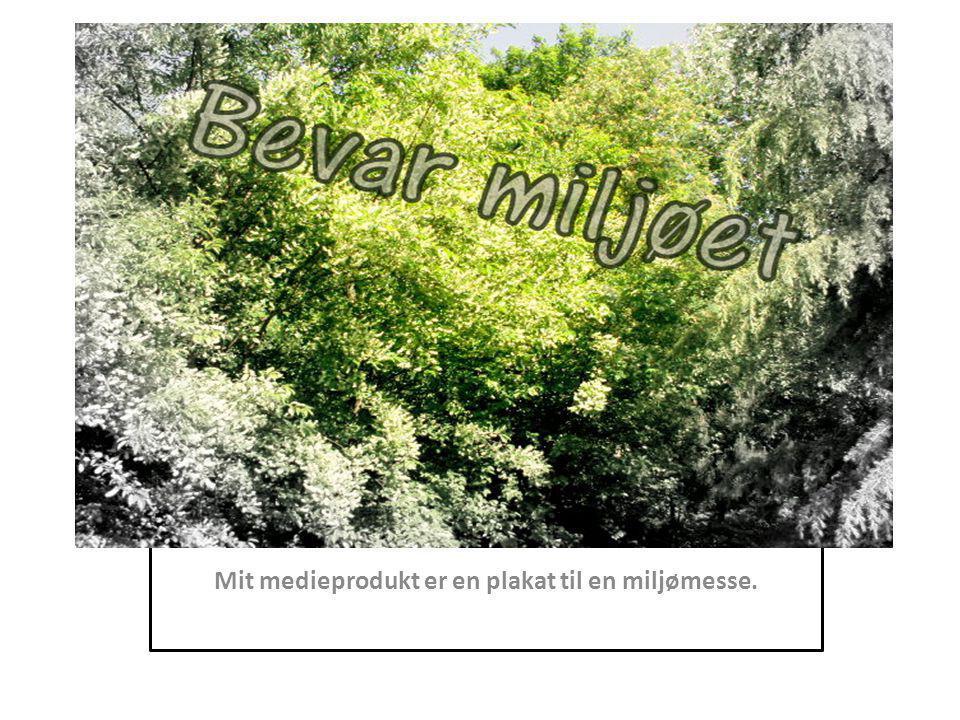 Mit medieprodukt er en plakat til en miljømesse.