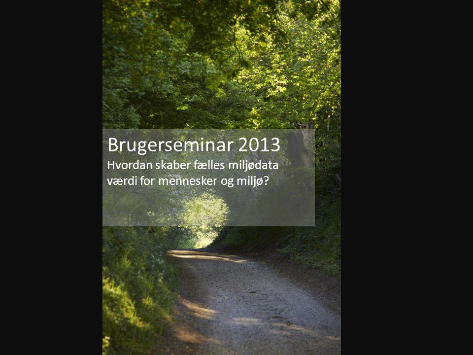 Brugerseminar 2013 Hvordan skaber fælles miljødata værdi for mennesker og miljø