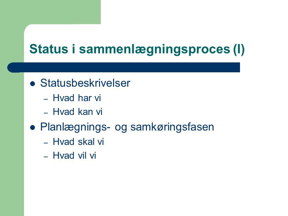 Status i sammenlægningsproces (I) Statusbeskrivelser – Hvad har vi – Hvad kan vi Planlægnings- og samkøringsfasen – Hvad skal vi – Hvad vil vi