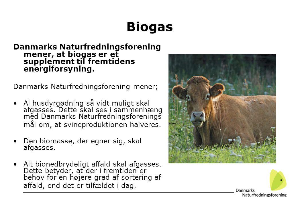 Biogas Danmarks Naturfredningsforening mener, at biogas er et supplement til fremtidens energiforsyning.