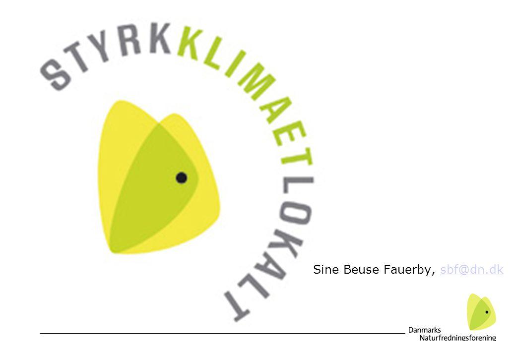 Sine Beuse Fauerby, sbf@dn.dksbf@dn.dk