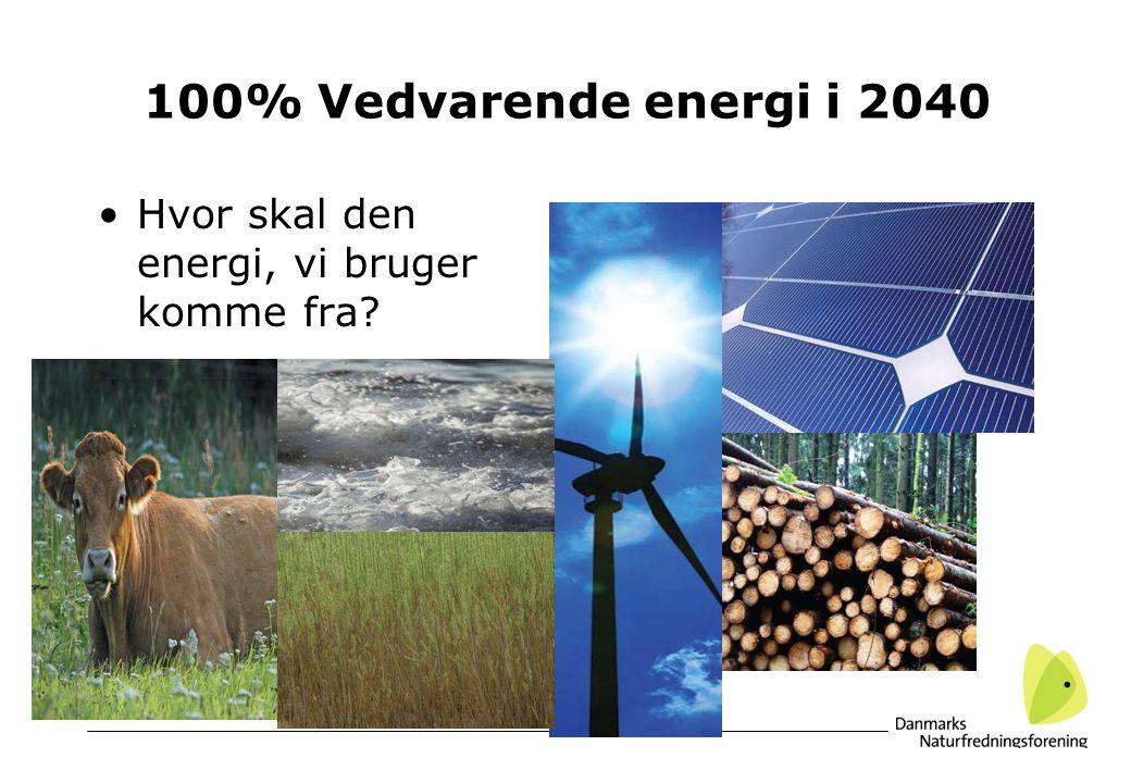 100% Vedvarende energi i 2040 Hvor skal den energi, vi bruger komme fra