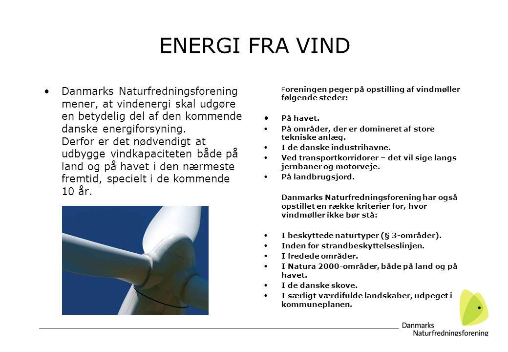 ENERGI FRA VIND Danmarks Naturfredningsforening mener, at vindenergi skal udgøre en betydelig del af den kommende danske energiforsyning.