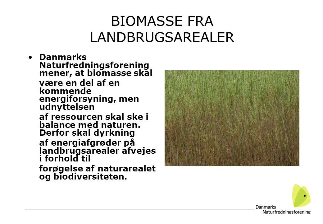 BIOMASSE FRA LANDBRUGSAREALER Danmarks Naturfredningsforening mener, at biomasse skal være en del af en kommende energiforsyning, men udnyttelsen af ressourcen skal ske i balance med naturen.