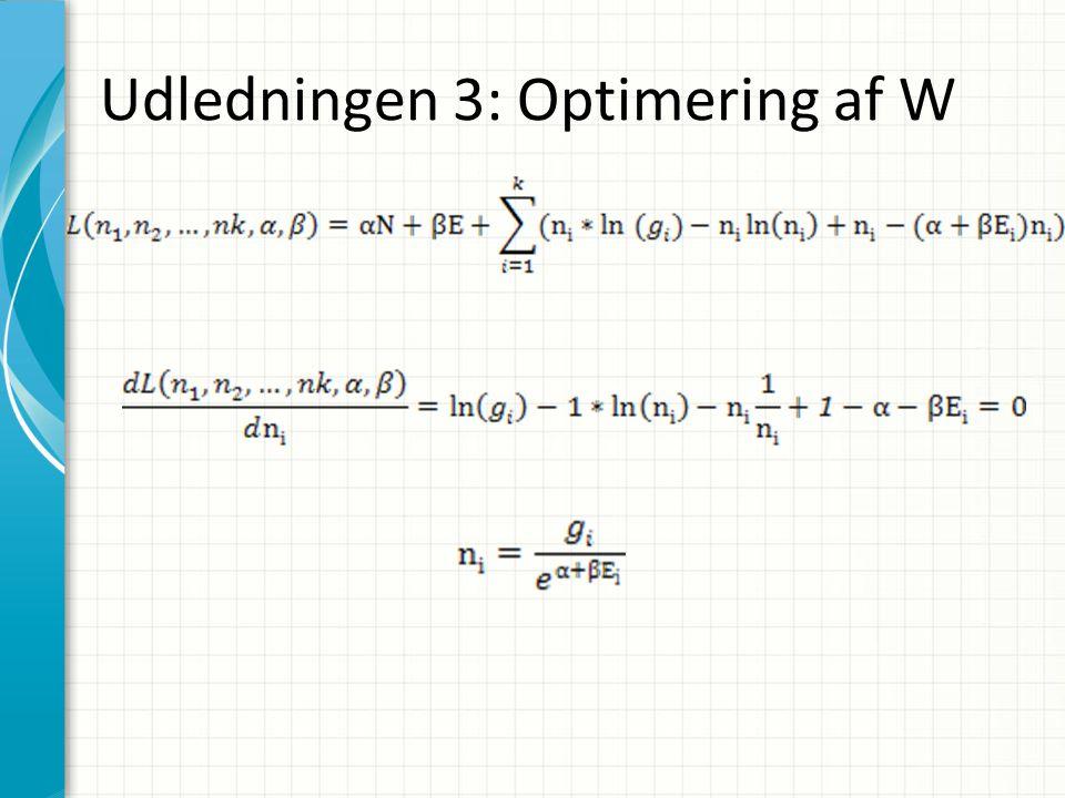 Udledningen 3: Optimering af W