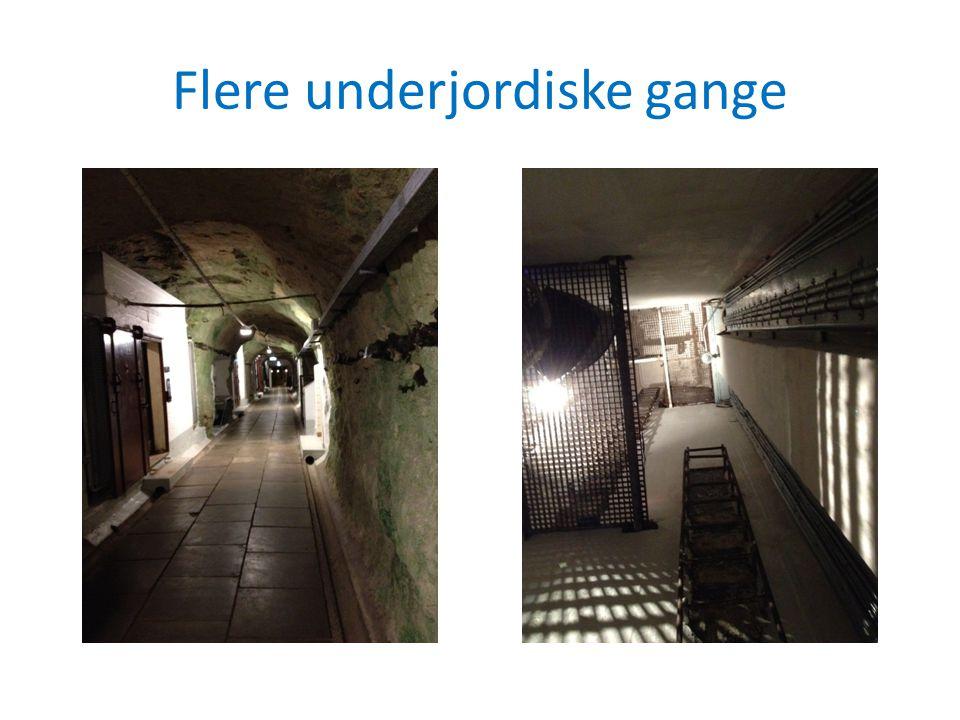 Flere underjordiske gange