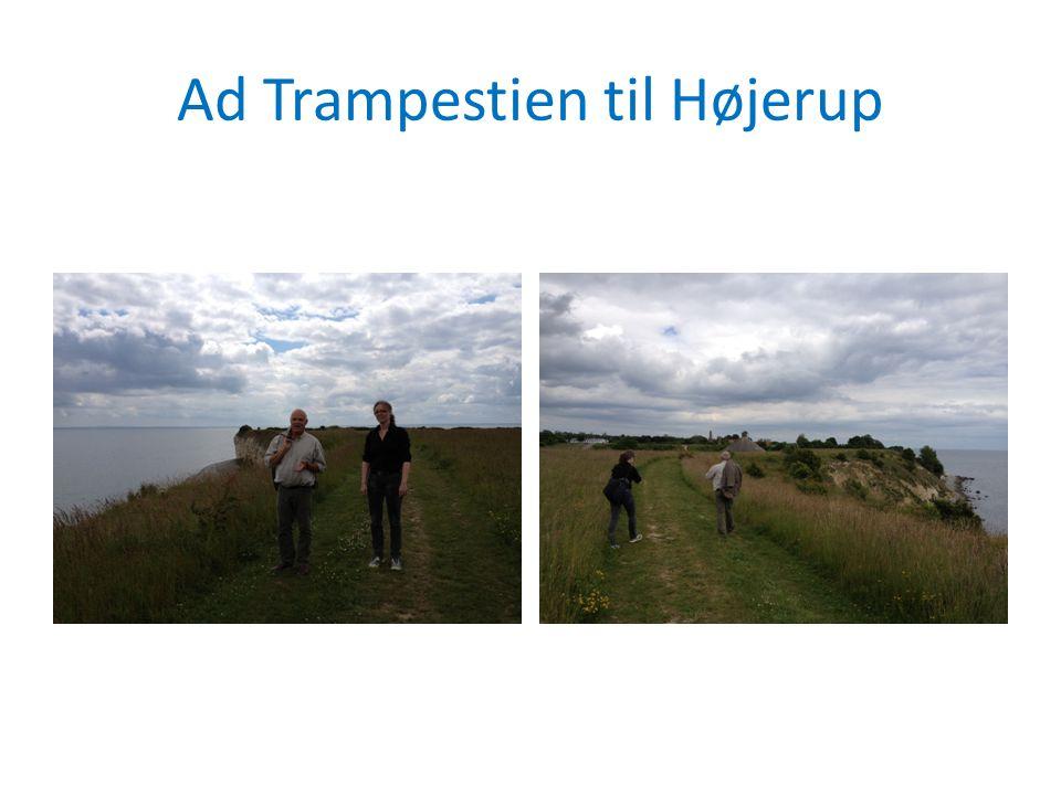 Ad Trampestien til Højerup