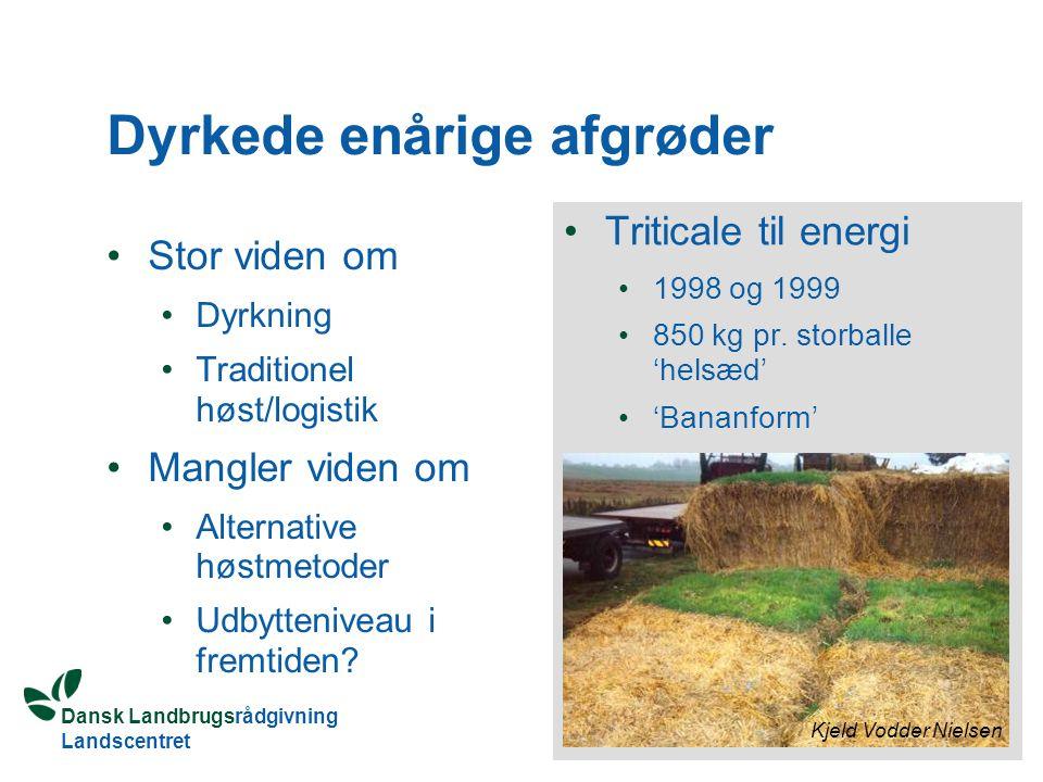 Dansk Landbrugsrådgivning Landscentret Dyrkede enårige afgrøder Stor viden om Dyrkning Traditionel høst/logistik Mangler viden om Alternative høstmetoder Udbytteniveau i fremtiden.