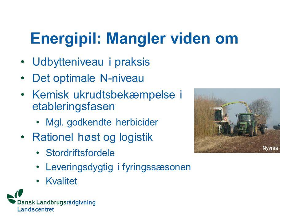 Dansk Landbrugsrådgivning Landscentret Energipil: Mangler viden om Udbytteniveau i praksis Det optimale N-niveau Kemisk ukrudtsbekæmpelse i etableringsfasen Mgl.