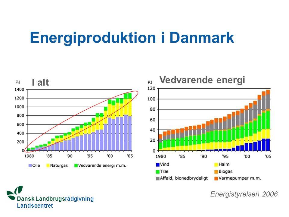 Dansk Landbrugsrådgivning Landscentret Energiproduktion i Danmark I alt Vedvarende energi Energistyrelsen 2006
