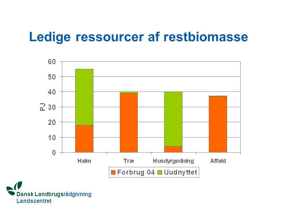 Dansk Landbrugsrådgivning Landscentret Ledige ressourcer af restbiomasse