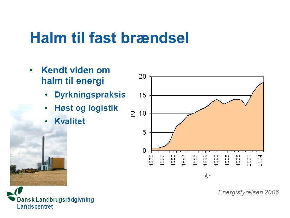 Dansk Landbrugsrådgivning Landscentret Halm til fast brændsel Kendt viden om halm til energi Dyrkningspraksis Høst og logistik Kvalitet Energistyrelsen 2006