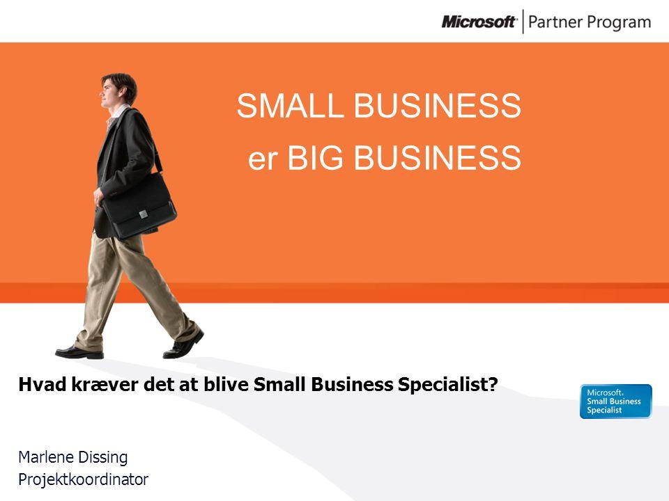 SMALL BUSINESS er BIG BUSINESS Hvad kræver det at blive Small Business Specialist.