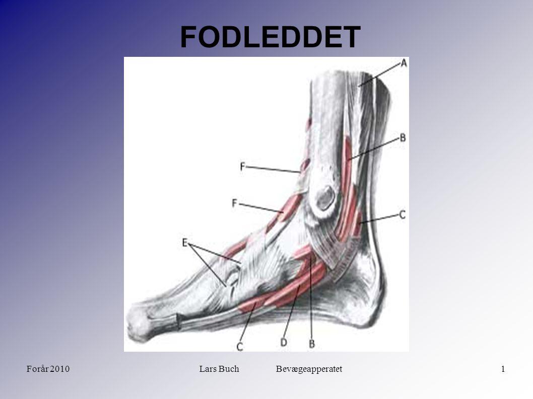 Forår 2010Lars Buch Bevægeapperatet12 FODLEDDET Sygdomme i fodled  Akutte skader:  Frakturer:  Laterale malleol  Proksimale fibula  Mediale malleol  Basis 5.