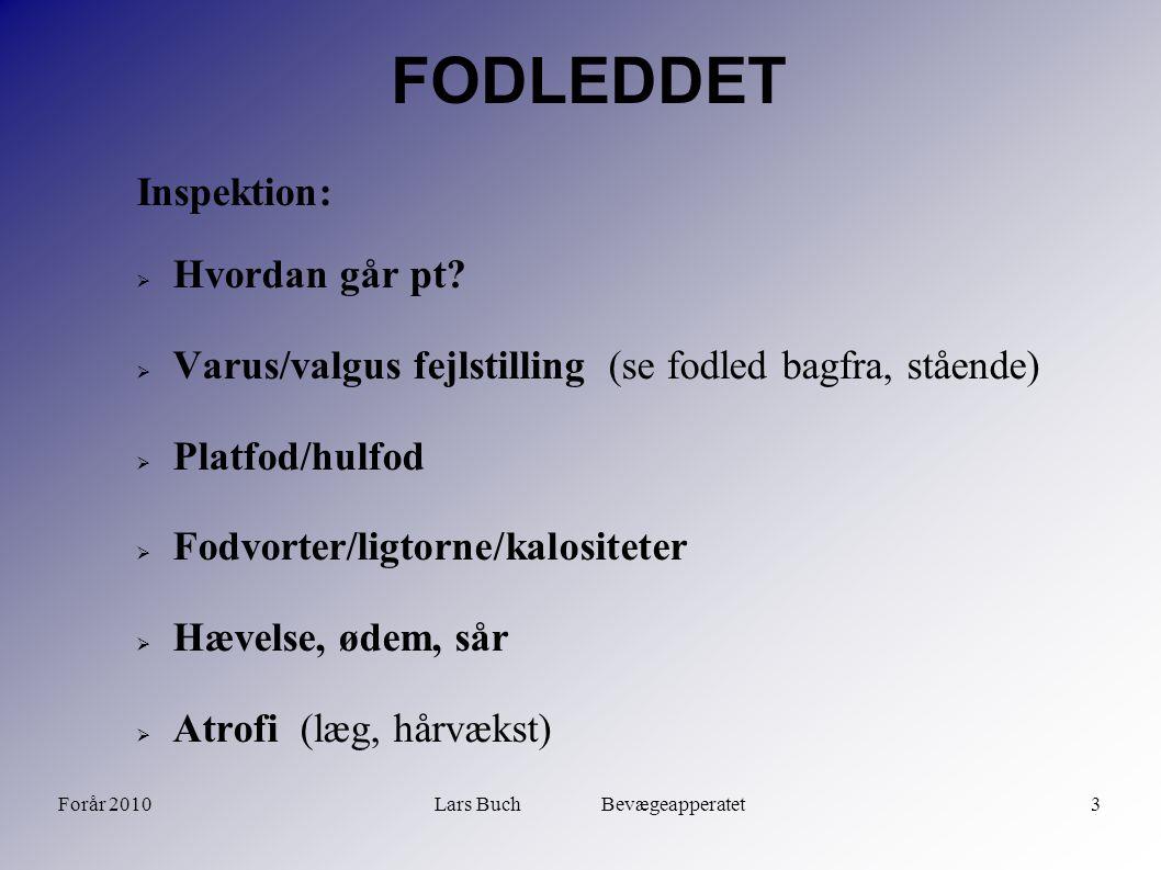 Forår 2010Lars Buch Bevægeapperatet4 FODLEDDET