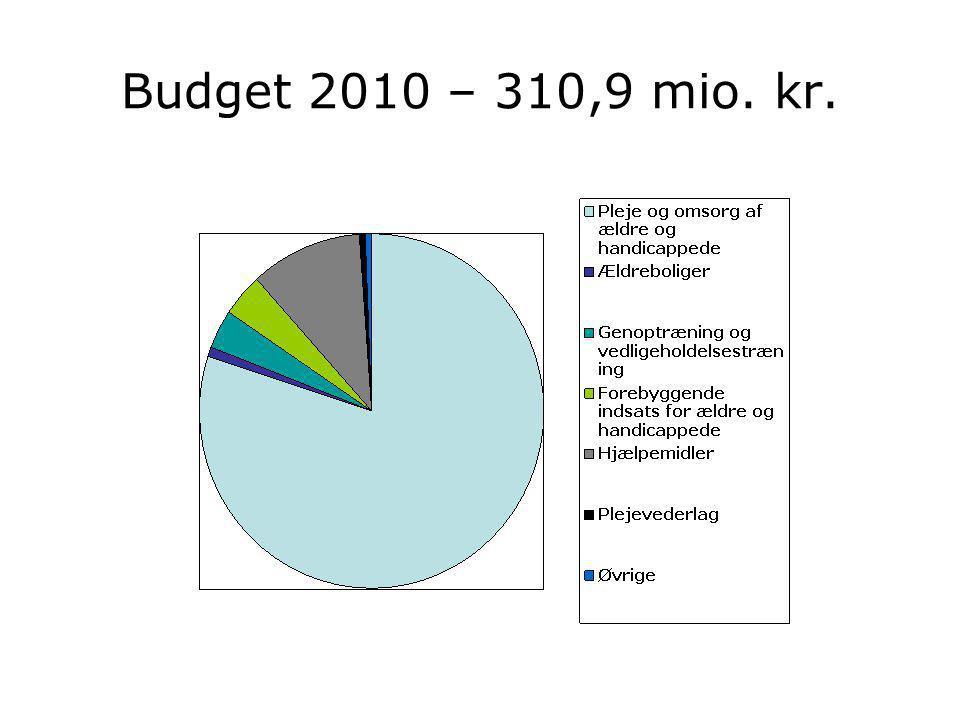Budget 2010 – 310,9 mio. kr.