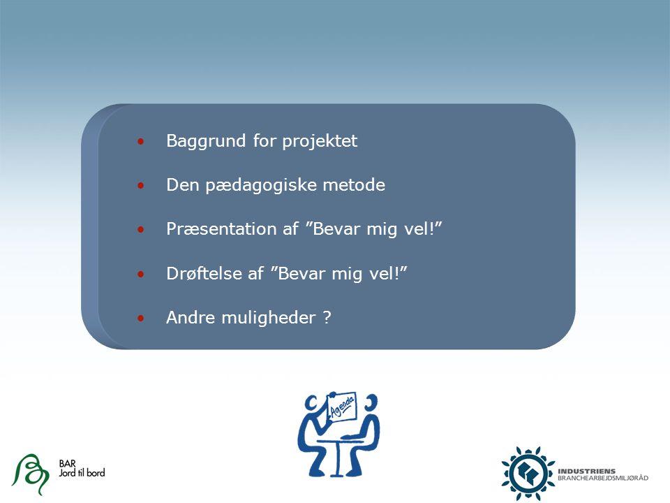 Baggrund for projektet Den pædagogiske metode Præsentation af Bevar mig vel! Drøftelse af Bevar mig vel! Andre muligheder