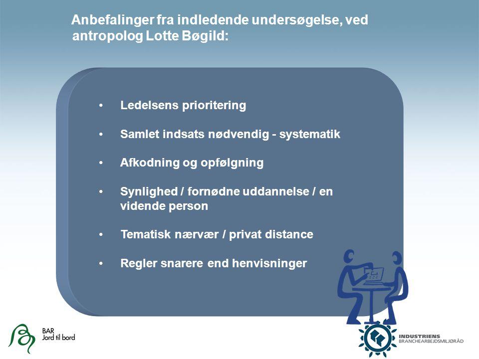 Ledelsens prioritering Samlet indsats nødvendig - systematik Afkodning og opfølgning Synlighed / fornødne uddannelse / en vidende person Tematisk nærvær / privat distance Regler snarere end henvisninger Anbefalinger fra indledende undersøgelse, ved antropolog Lotte Bøgild: