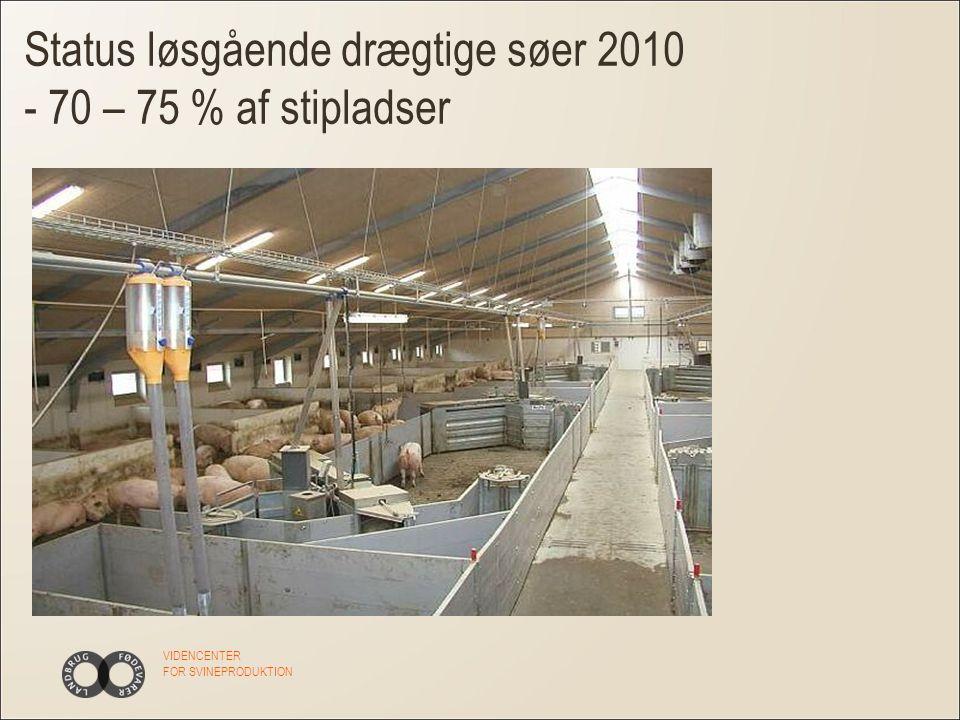 VIDENCENTER FOR SVINEPRODUKTION Status løsgående drægtige søer 2010 - 70 – 75 % af stipladser