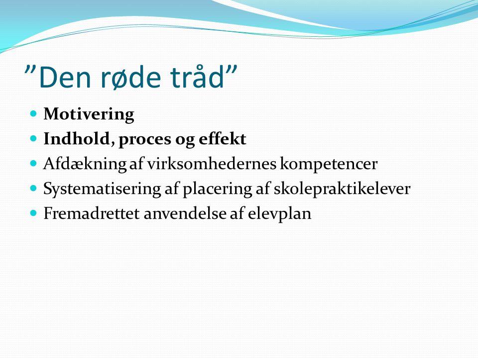 Den røde tråd Motivering Indhold, proces og effekt Afdækning af virksomhedernes kompetencer Systematisering af placering af skolepraktikelever Fremadrettet anvendelse af elevplan