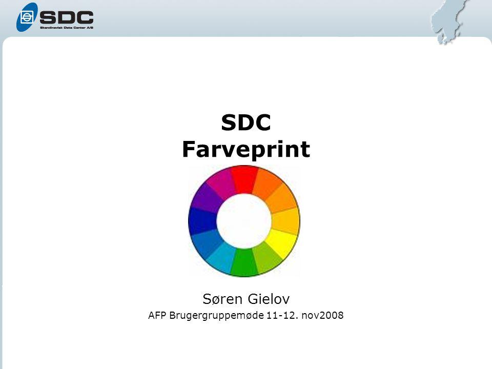 SDC Farveprint Søren Gielov AFP Brugergruppemøde 11-12. nov2008