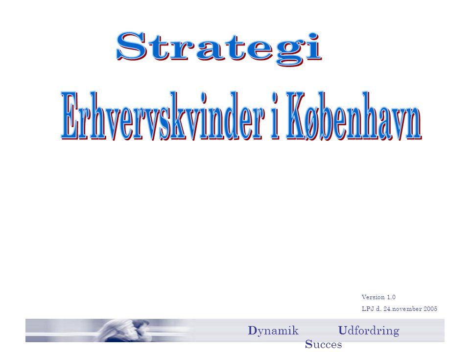 Version 1.0 LPJ d. 24.november 2005 D ynamik U dfordring S ucces