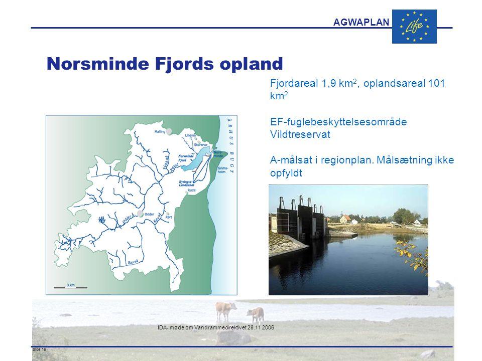 AGWAPLAN IDA- møde om Vandrammedirektivet 28.11 2006 Side 19 · · Norsminde Fjords opland Fjordareal 1,9 km 2, oplandsareal 101 km 2 EF-fuglebeskyttelsesområde Vildtreservat A-målsat i regionplan.