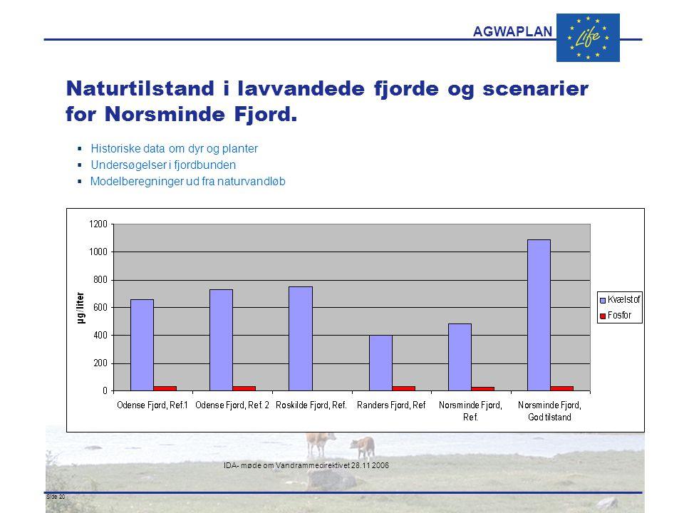 AGWAPLAN IDA- møde om Vandrammedirektivet 28.11 2006 Side 20 · · Naturtilstand i lavvandede fjorde og scenarier for Norsminde Fjord.