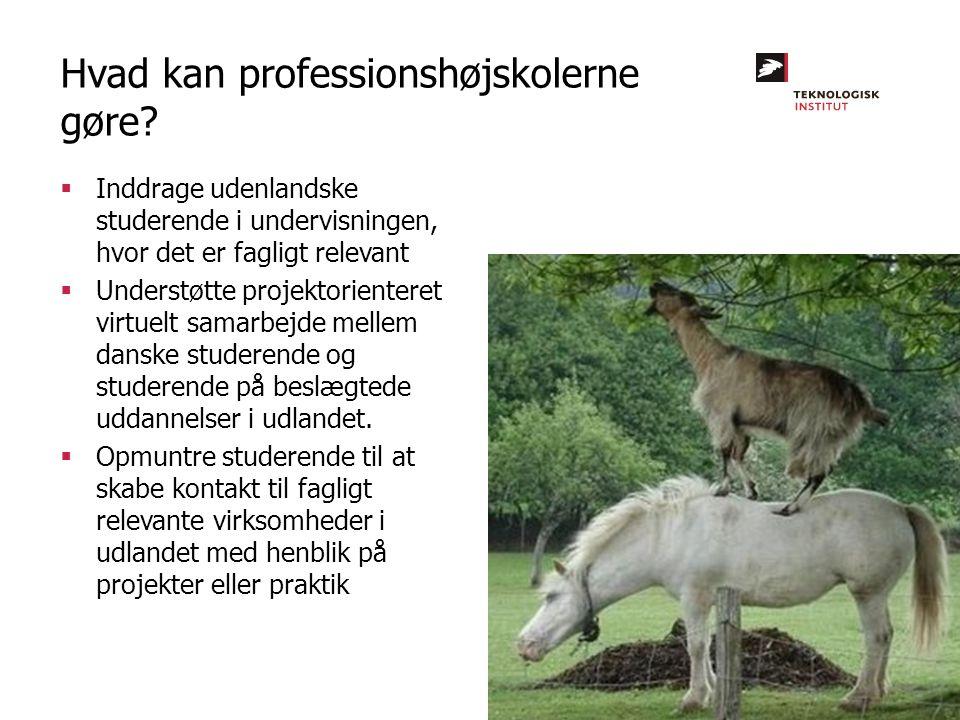  Inddrage udenlandske studerende i undervisningen, hvor det er fagligt relevant  Understøtte projektorienteret virtuelt samarbejde mellem danske studerende og studerende på beslægtede uddannelser i udlandet.