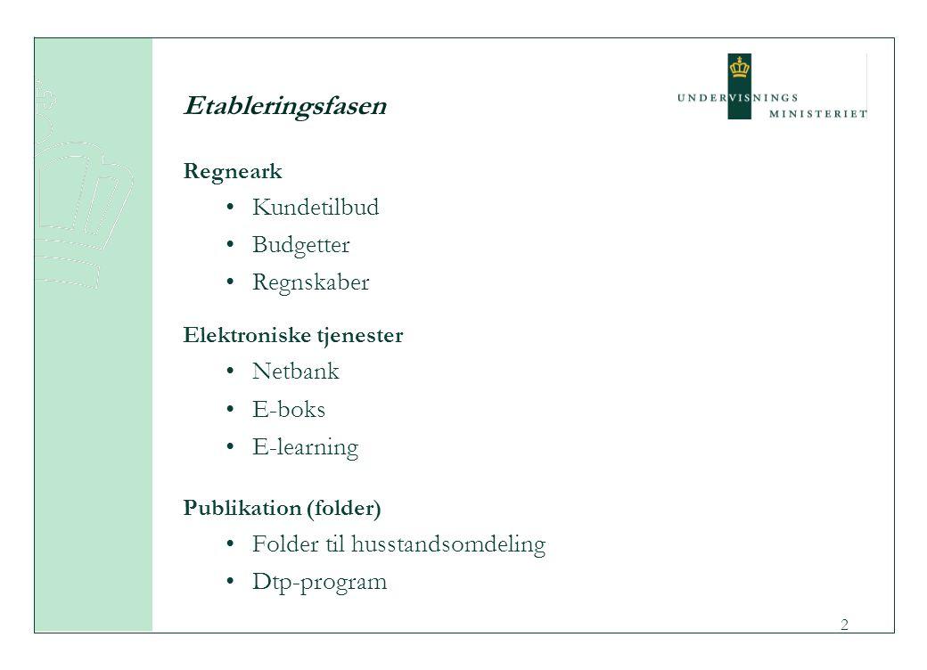 2 Etableringsfasen Regneark Kundetilbud Budgetter Regnskaber Elektroniske tjenester Netbank E-boks E-learning Publikation (folder) Folder til husstandsomdeling Dtp-program