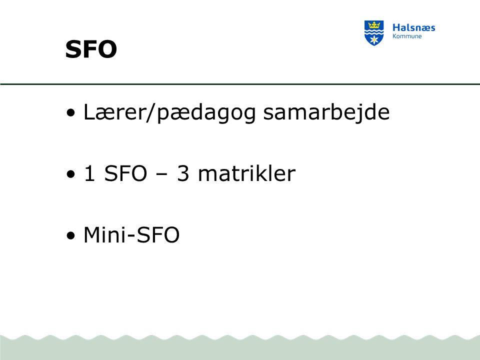 SFO Lærer/pædagog samarbejde 1 SFO – 3 matrikler Mini-SFO