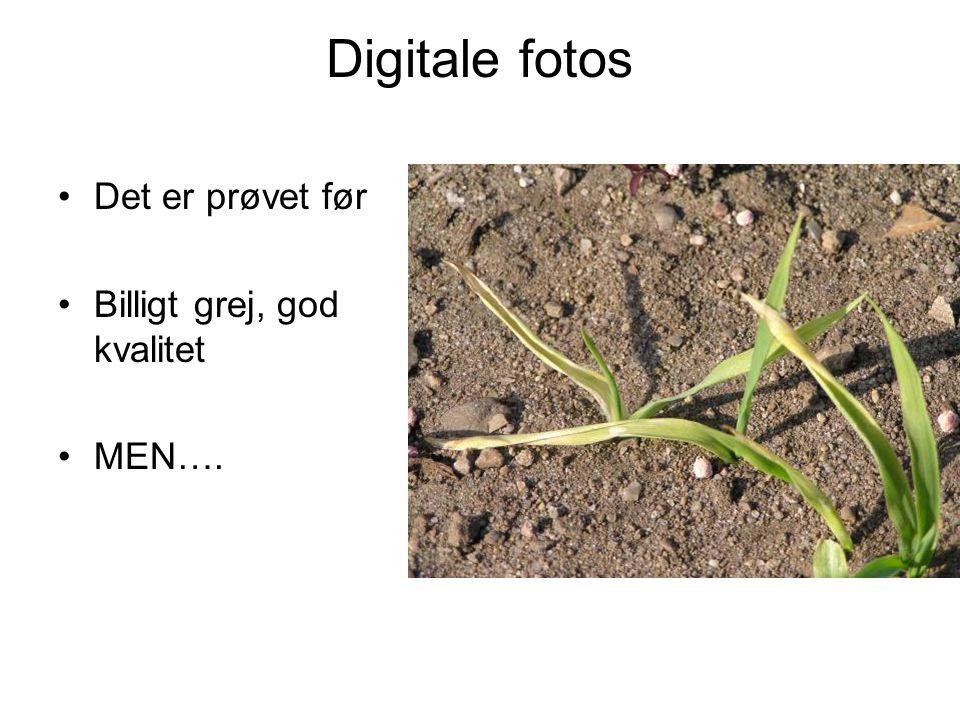 Digitale fotos Det er prøvet før Billigt grej, god kvalitet MEN….