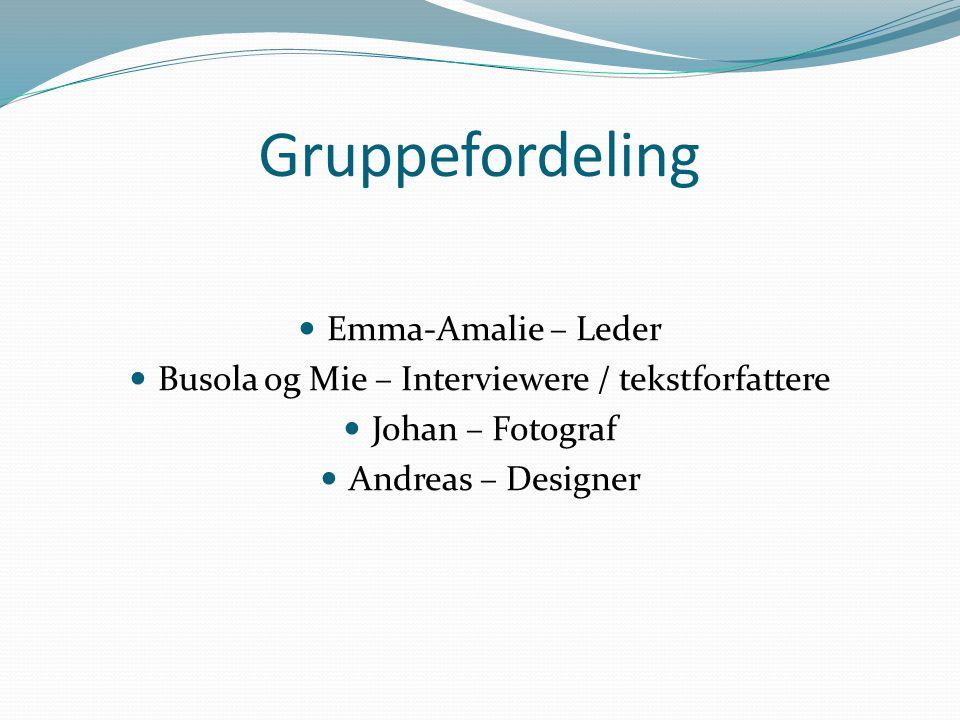 Gruppefordeling Emma-Amalie – Leder Busola og Mie – Interviewere / tekstforfattere Johan – Fotograf Andreas – Designer