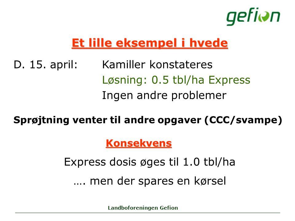 Landboforeningen Gefion Et lille eksempel i hvede D.