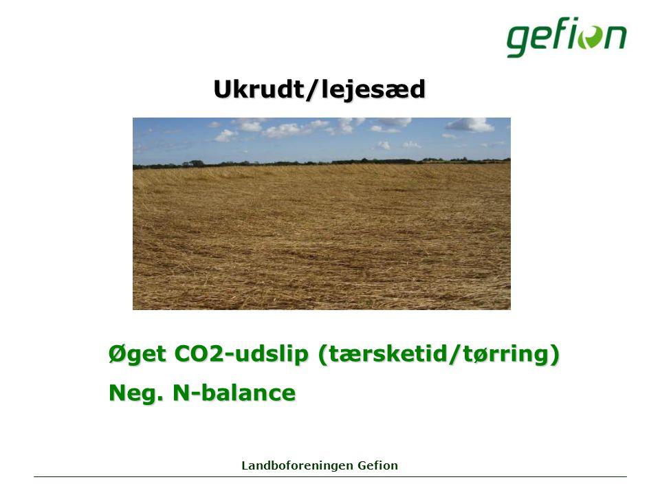 Landboforeningen Gefion Ukrudt/lejesæd Øget CO2-udslip (tærsketid/tørring) Neg. N-balance