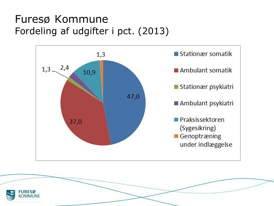 Furesø Kommune Fordeling af udgifter i pct. (2013)