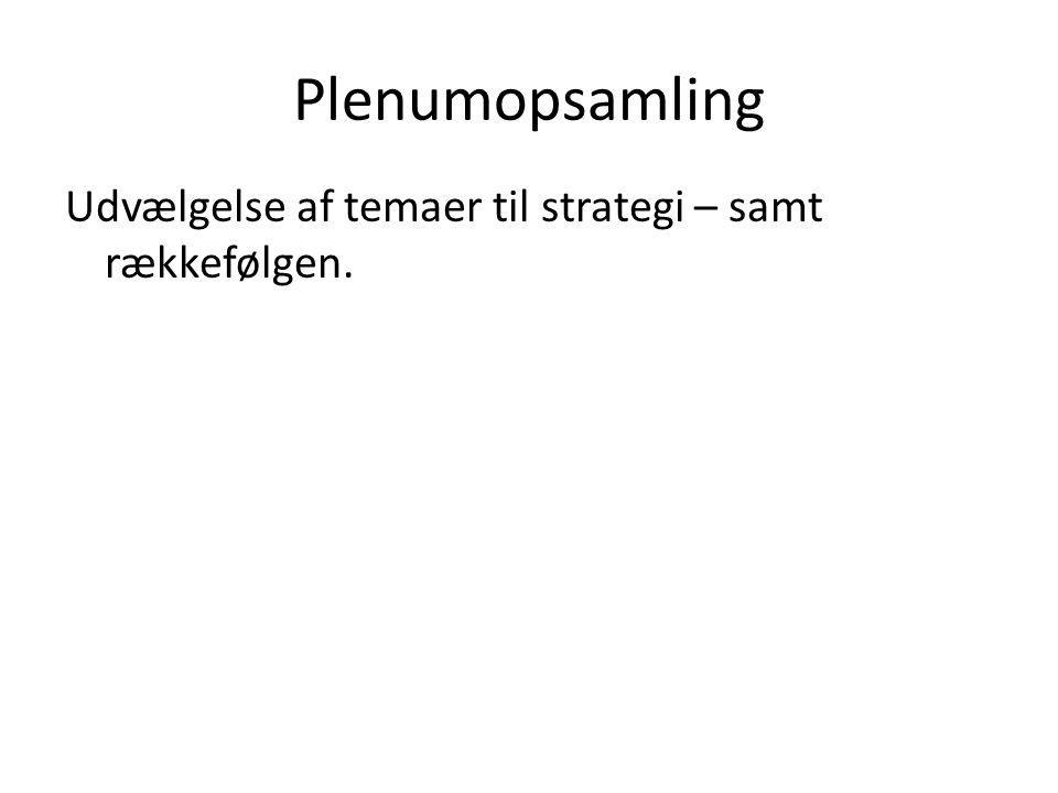 Plenumopsamling Udvælgelse af temaer til strategi – samt rækkefølgen.