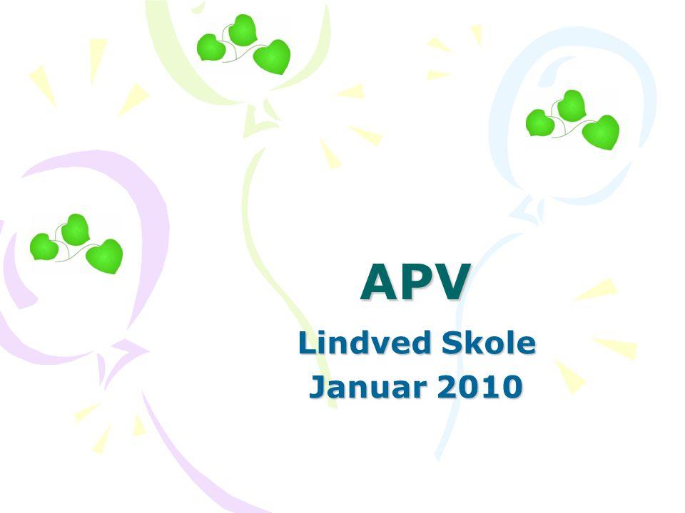 APV Lindved Skole Januar 2010