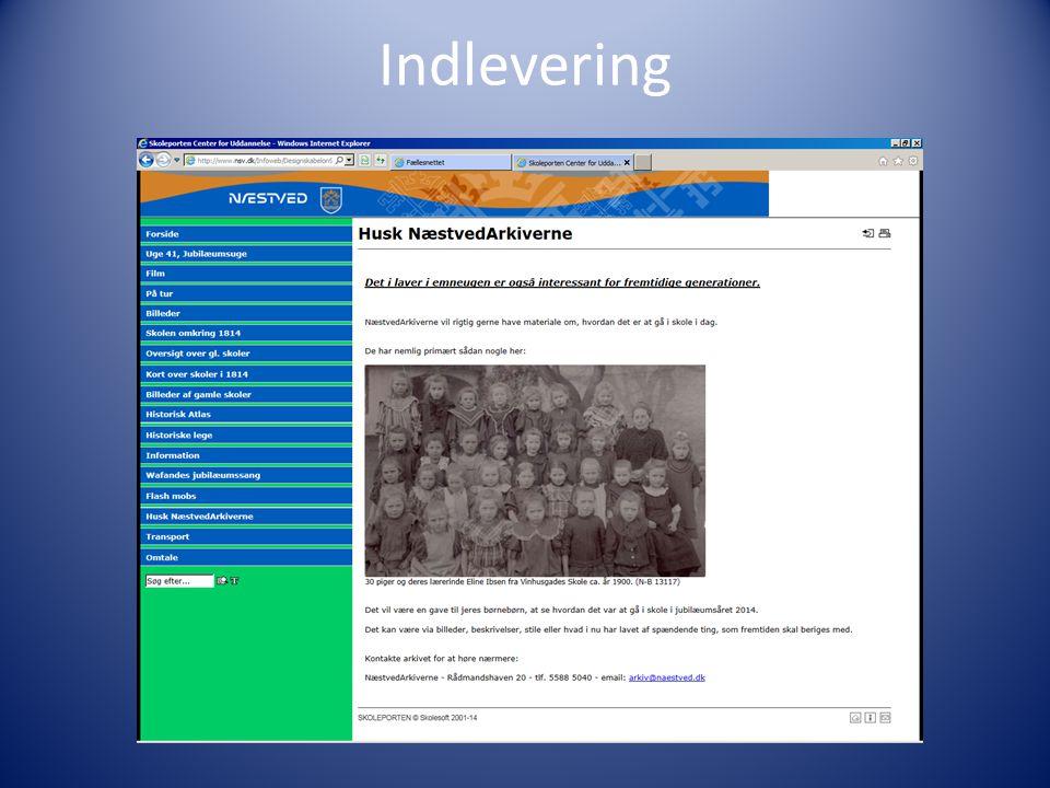 Indlevering